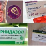 Nitroimidazole Anti-Giardia Telafiler