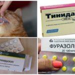 Giardiasis için tabletler